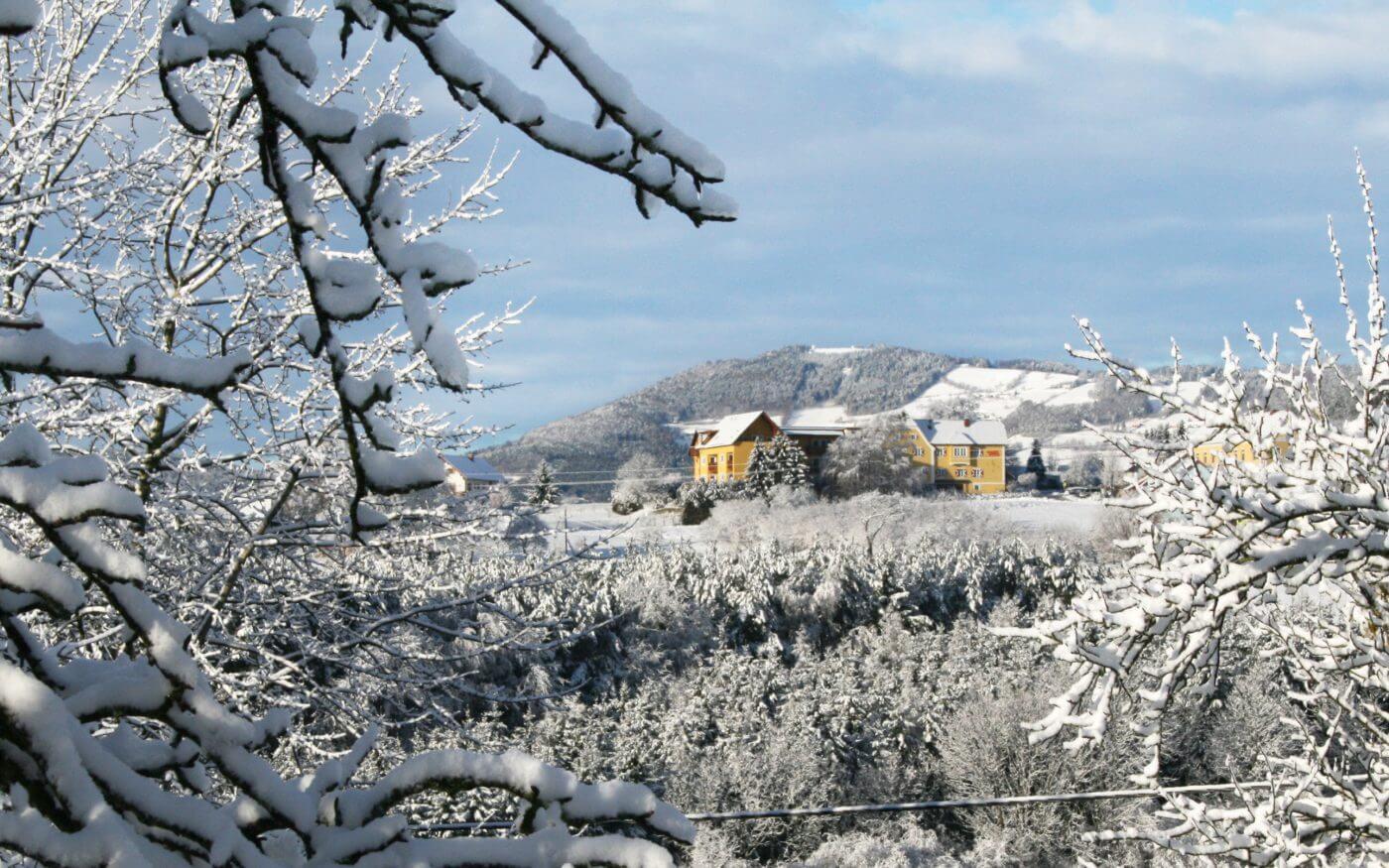 Winter, Oststeiermark, Apfelland