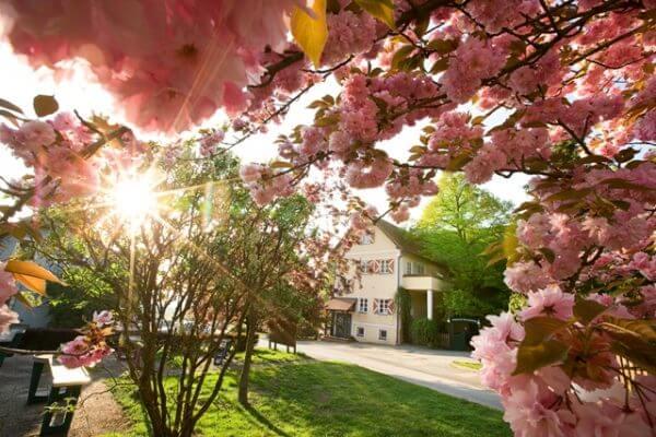 Frühling, Hotel