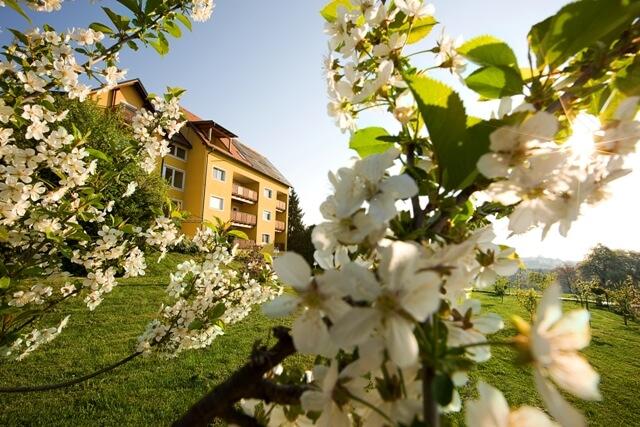 Frühling, Hotel, Apfelblüte