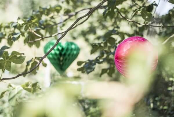Lampions, Natur, Feier