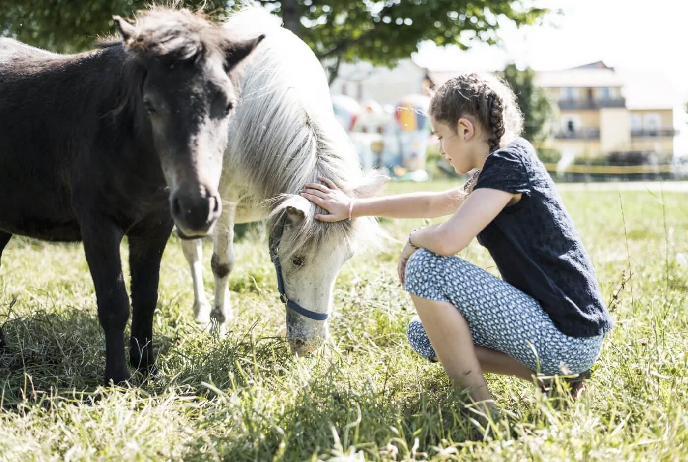Ponys, Streichelzoo, kinder
